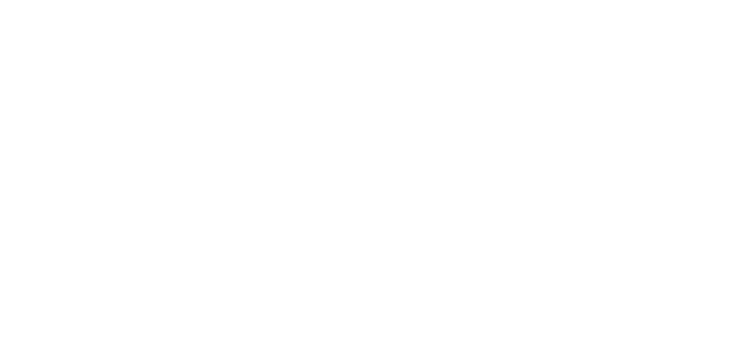 20 FAMILY'S LIFE COMPLETED IN 2010