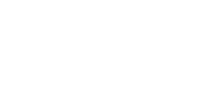 20 FAMILY'S LIFE COMPLETED IN 2006